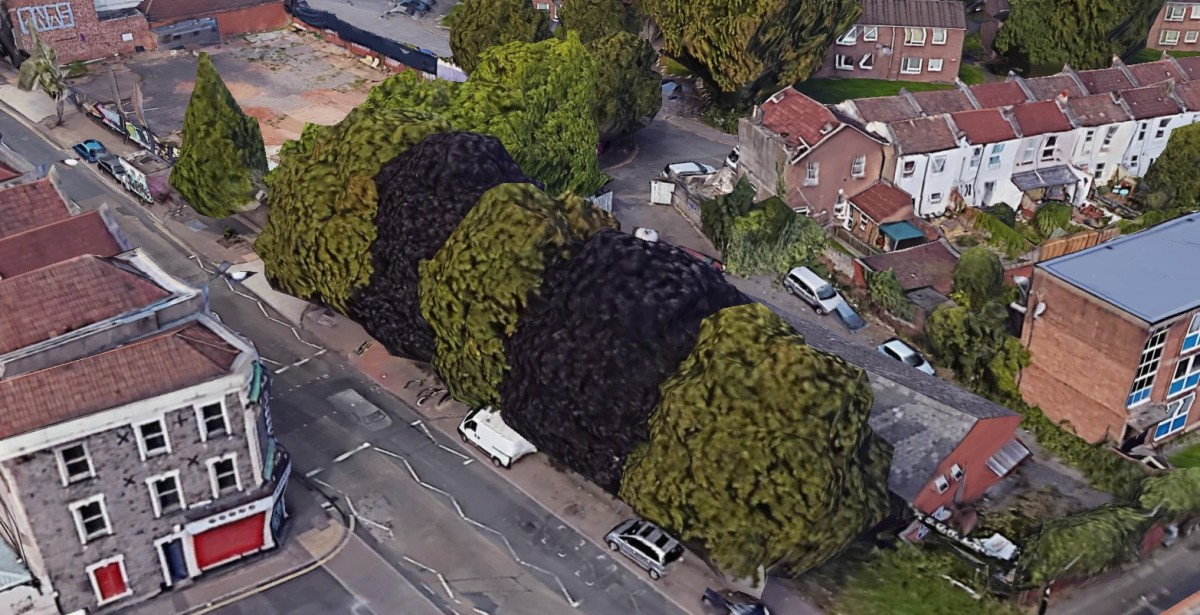 Shocking treatment of Lower Ashley Road trees shows urgent need for Bristol Planning rethink